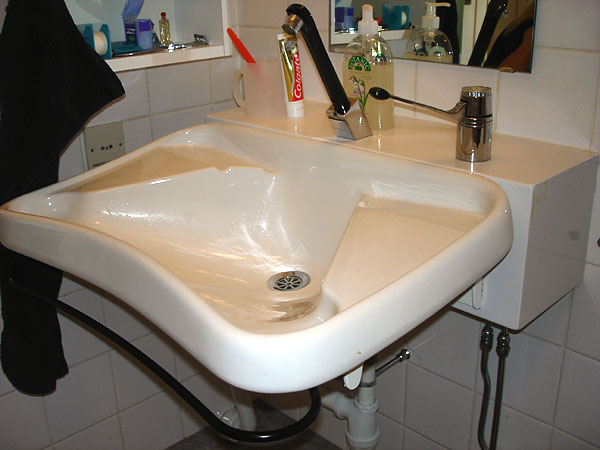 Sink with hand shower