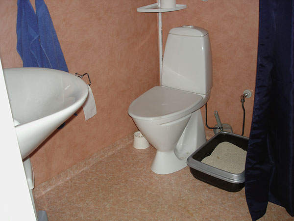 Toilet facilities with elevated toilet