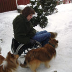 Dogs for wheelchair users