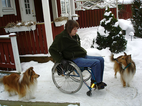 User with dogs in garden