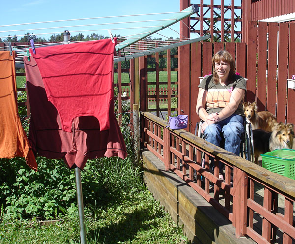 Clothes dryer seen from the garden
