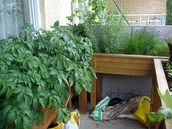 Accessible balcony garden
