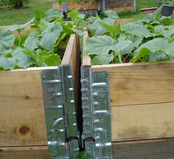 Raised beds from pallet collars (image )