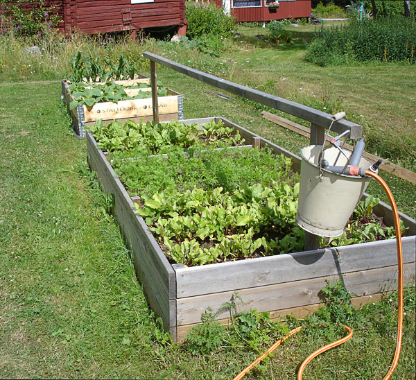 Watering accessible raised beds