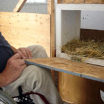 Accessible chicken house