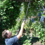 Long-handled garden pruner
