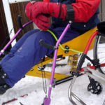 Ski poles for Sitski
