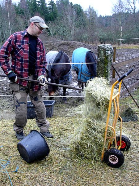 User places hay in pasture with hay fork