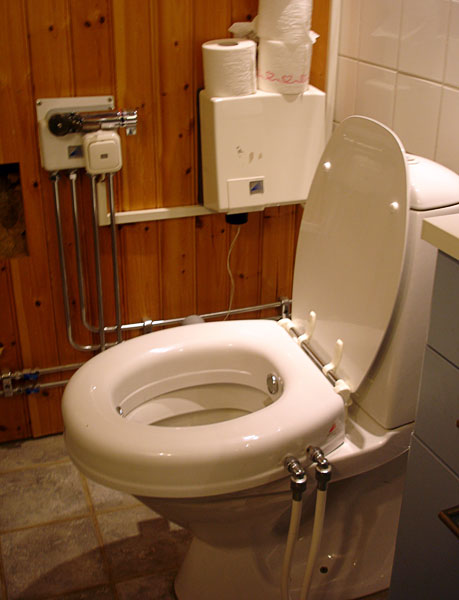 Toilet seat with flush function