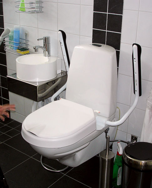 Toilet in adapted bathroom