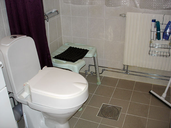 Toilet with adjacent shower