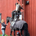 Transfer to horse