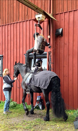 User transfers from wheelchair to horse using a lift (photo: Carin Bergfeldt)