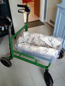 Combined rollator and crib