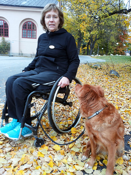 Holder for dog leash on wheelchair footrest
